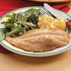 Citrus Orange Roughy picture