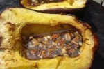 Honey Nut Acorn squash picture
