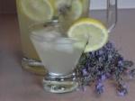 Lavender Cooler picture
