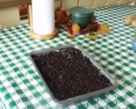 Kansas Dirt Cake picture