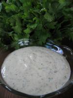 Amy's Cilantro Cream Sauce picture
