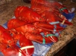 Maine Boiled Lobsters picture