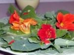 Summer Flower Salad picture