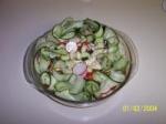 Beautiful Cucumber Salad picture