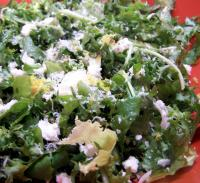 Cheese and Green Leafy Salads - Formally Known As Watercress And picture