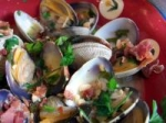 Clams in Garlic & White Wine picture
