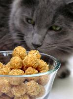 Tabby Tuna Cakes (For Kitty) picture