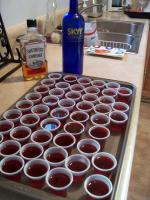 Thanksgiving Jello Shots picture