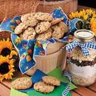 oatmeal chip cookie mix picture