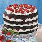 Raspberry Chocolate Torte picture