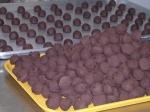 chocolate coconut balls picture