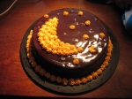 chocolate party cake picture