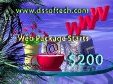 web design company in chennnai picture