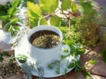My Special herbal Tea all Naturall.. picture