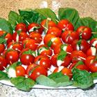 Tomato and Mozzarella Bites picture