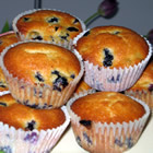 alienated blueberry muffins picture