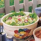 apple iceberg salad picture