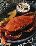 cracked crab with caviar dipping sauce picture