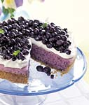 no-bake blueberry cheesecake with graham cracker crust picture