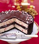 chocolate-peppermint ice cream cake picture