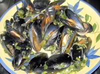 Steamed Mussels with wine and cream picture