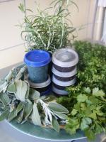 Herbes de Provence picture