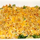 broccoli chicken casserole picture