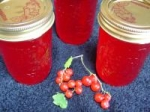 Currant Jelly picture